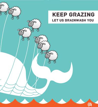 keep grazing 2