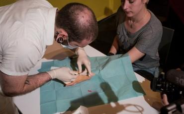 implant-party-puce sous cutanée
